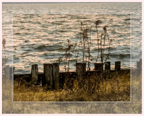 sandy hook shoreline w barriers